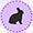 Bunny Hop 2013